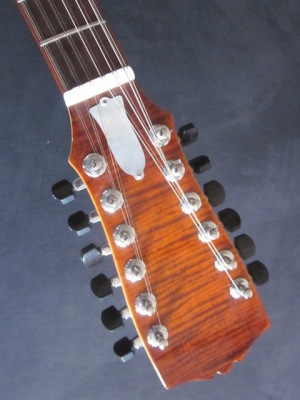 Rock-Gitarre-12-Saiten-Les-Paul-4-