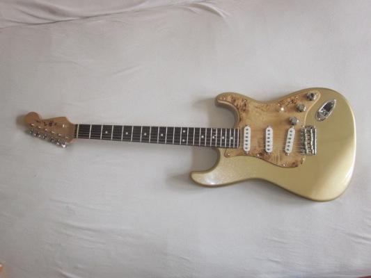 Rock-Goldtop-Pappel-3-