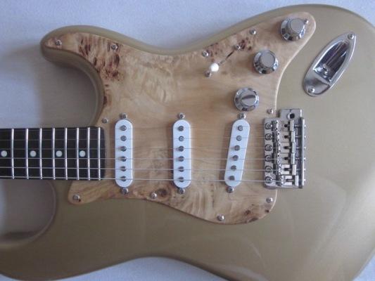 Rock-Pappel-Goldtop-2-